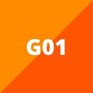 G01 (vanaf 2018)